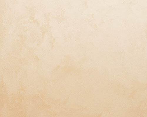 armourcoat-2458.2-palettes-PLS_Y2577