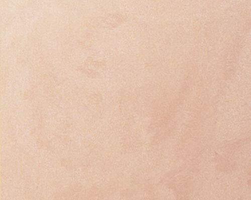 armourcoat-2476.2-palettes-PLS_N5177